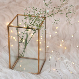 Terrarium - Rectangle - Gold - With Lights And Wooden Stand-HOME ACCESSORIES-PropShop24.com