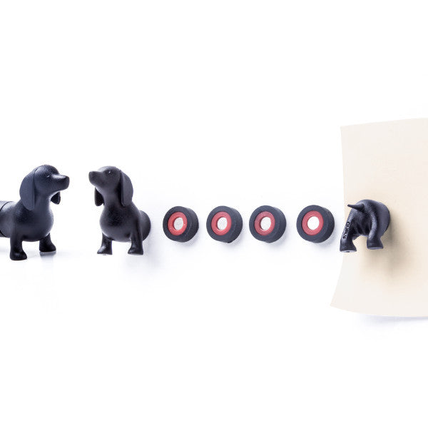 Dog Magnet - Dachshund - Assorted Colour-Home-PropShop24.com