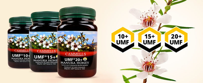 Why is UMF Manuka Honey so special?