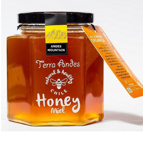 Chilean Mountain Honey 375g