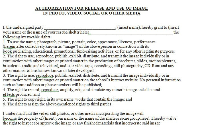 Spread The Word: Media Release Form For An Adult, Authorizing Their  Image/voice