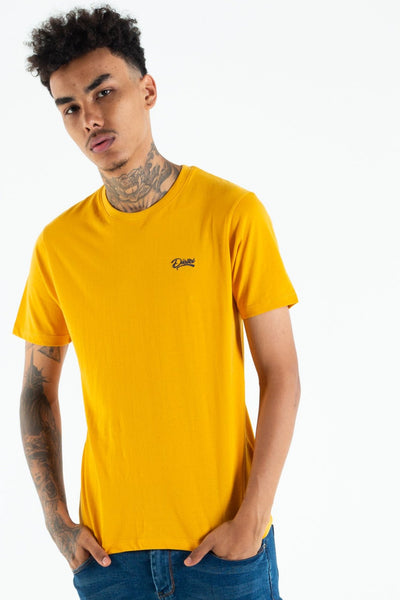 basic scott o neck tee citrus