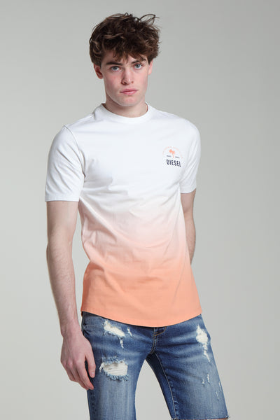 Fred Tee Coral Reef
