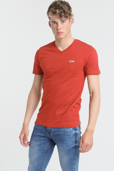 basic scott v neck tee ketchup