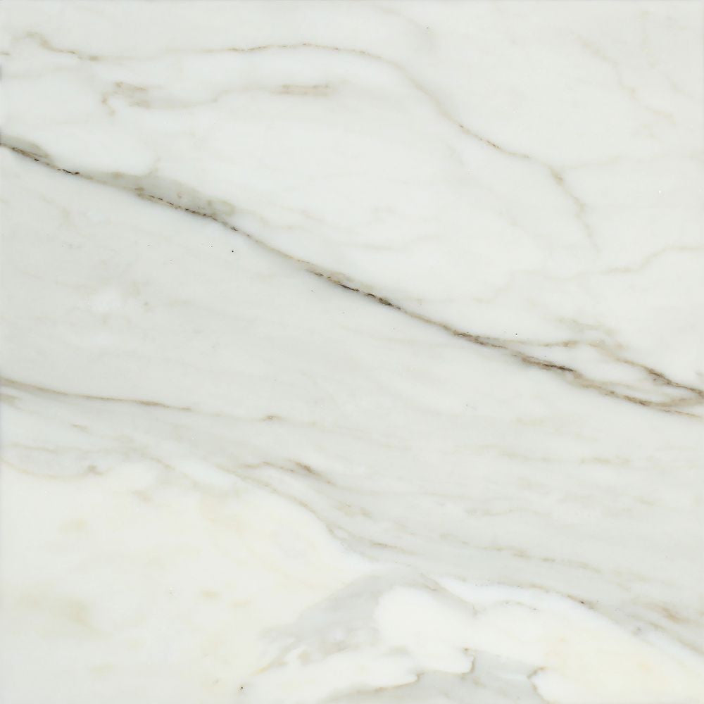12 x 12 Honed Calacatta Gold Marble Tile Sample
