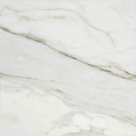 12 x 12 Honed Calacatta Gold Marble Tile