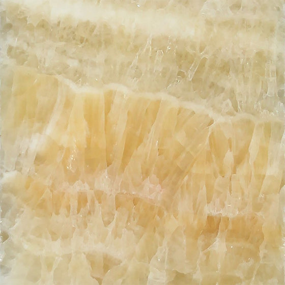 12 x 12 Polished Honey Onyx Tile - Tilephile