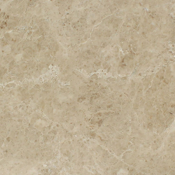 24 x 24 Polished Cappuccino Marble Tile - Tilephile