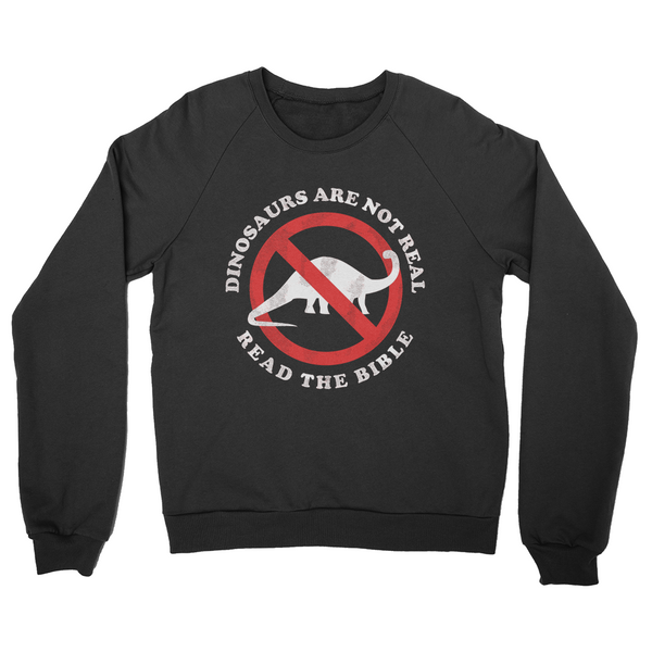 Dinosaurs Are Not Real Read The Bible Sweater