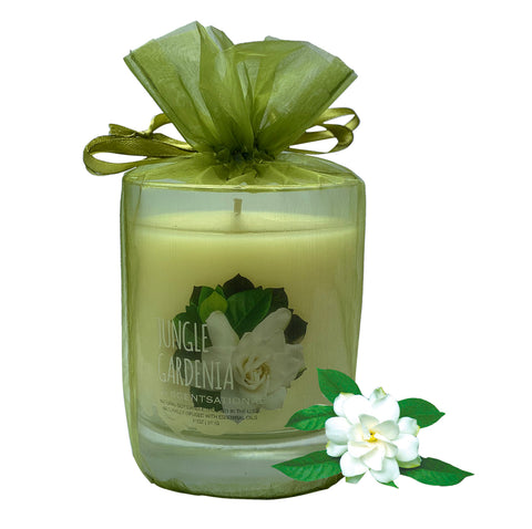 Image of Scented Soy Candles GARDENIA (11 oz) eliminates smoke, household and pet odors.