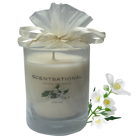 Image of Scented Soy Candles JASMINE (11 oz) eliminates smoke, household and pet odors.