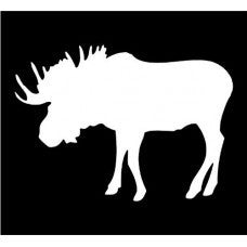 BULL MOOSE animal mammal Car Window Vinyl Decal Tablet PC Sticker - MyMonkeySticker.com