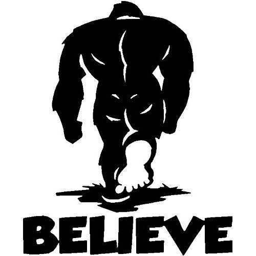 Bealieve Bigfoot Yeti Decal Car Truck 4x4 Sasquatch Jeep Sticker Vinyl Jeep Off Road - MyMonkeySticker.com