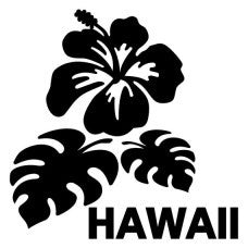 Hawaii Hibiscus Flower Car Automobile Car Window Decal Tablet PC Sticker Automobile Window Wall Laptop Notebook Etc. Any Smooth Surface - MyMonkeySticker.com