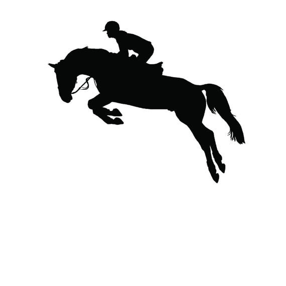 Horse Jumping Wall Art Stylish Stickers Vinyl Decal Home Graphics Lounge Bedroom - MyMonkeySticker.com