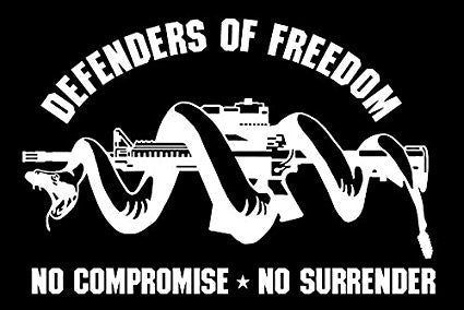 Molon Labe Defenders Of Freedom  Vinyl Car/Laptop/Window/Wall Decal - MyMonkeySticker.com