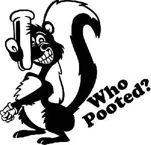 Who Pooted ?  Laptop Vinyl Car Decal - MyMonkeySticker.com