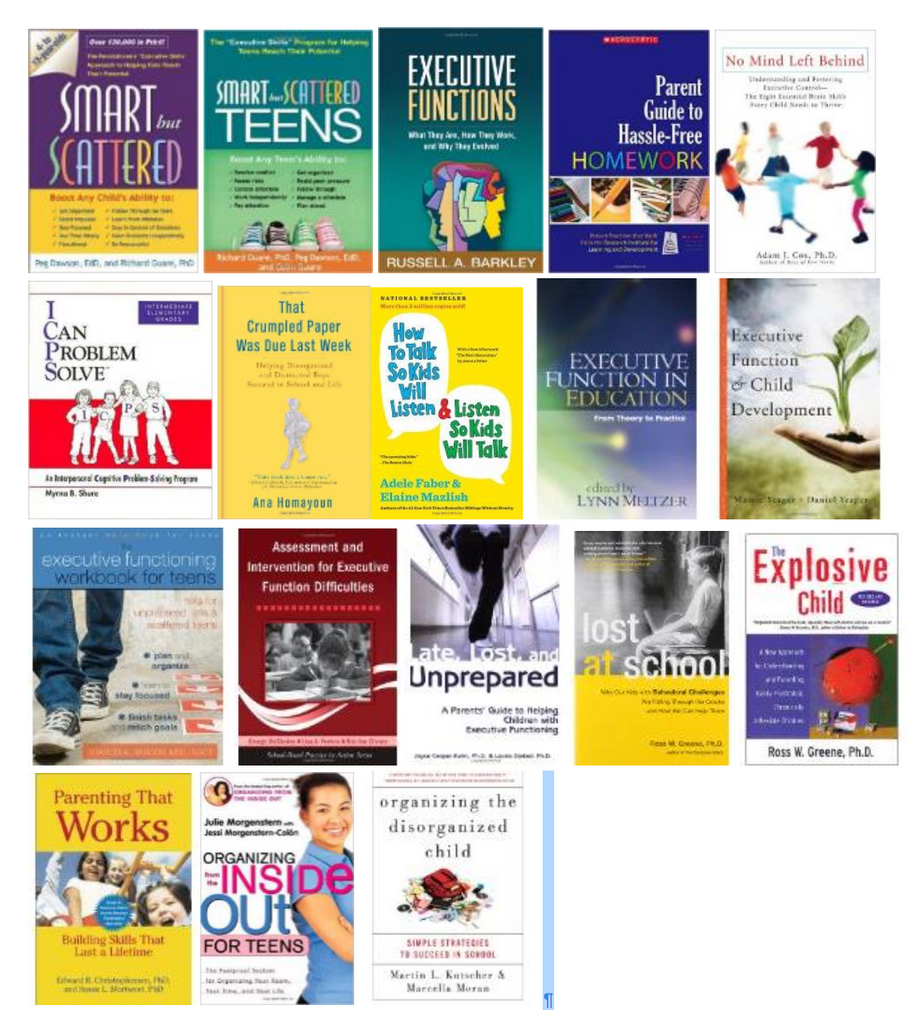 Books Resources on Executive Function