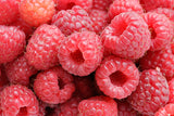 Buy Online Meeker Red Raspberry Fruit Plants For Your Home & Garden