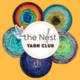 THE NEST Exclusive Knit Circus Yarn Club #1