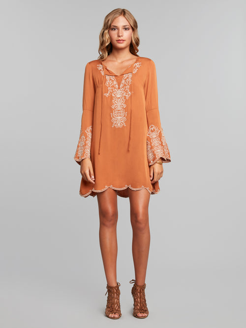 Caelum Embroidered Trapeze Dress