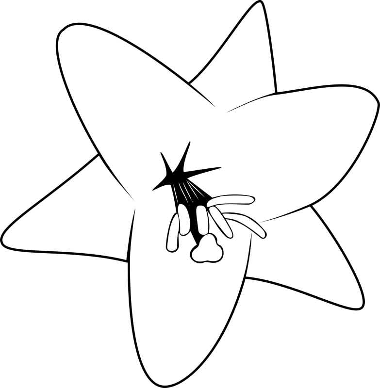 Blooming Lily Rubber Stamp - Stamptopia
