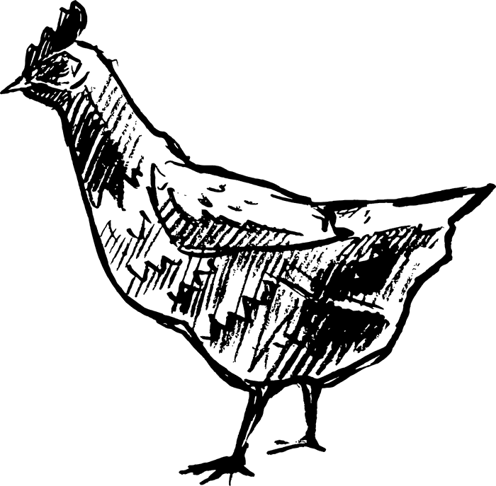 Chicken On The Hunt Rubber Stamp - Stamptopia