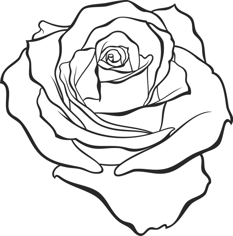 Dazzling Drawn Rose Rubber Stamp - Stamptopia