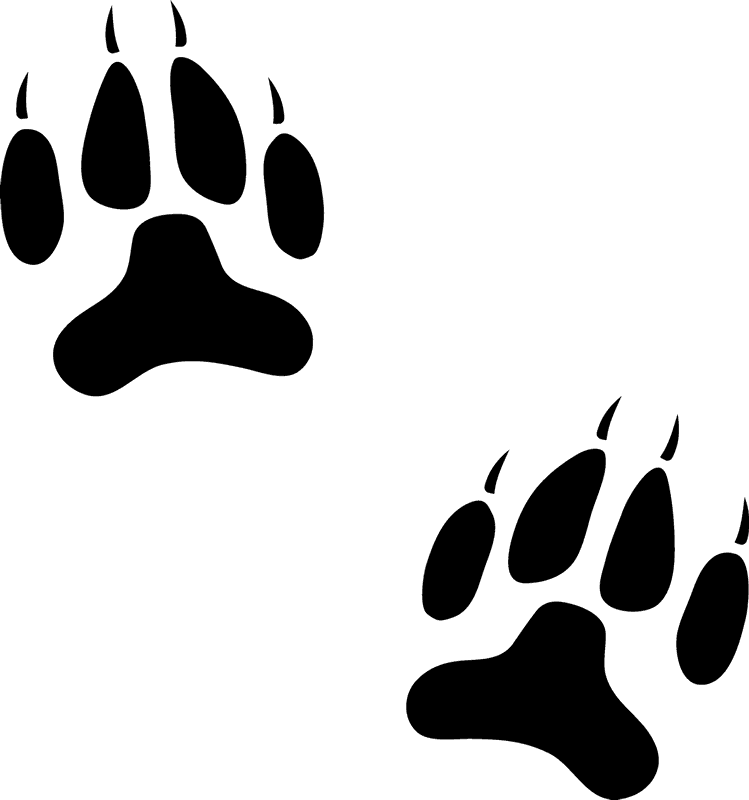 Dog Paw Prints Stamp - Stamptopia