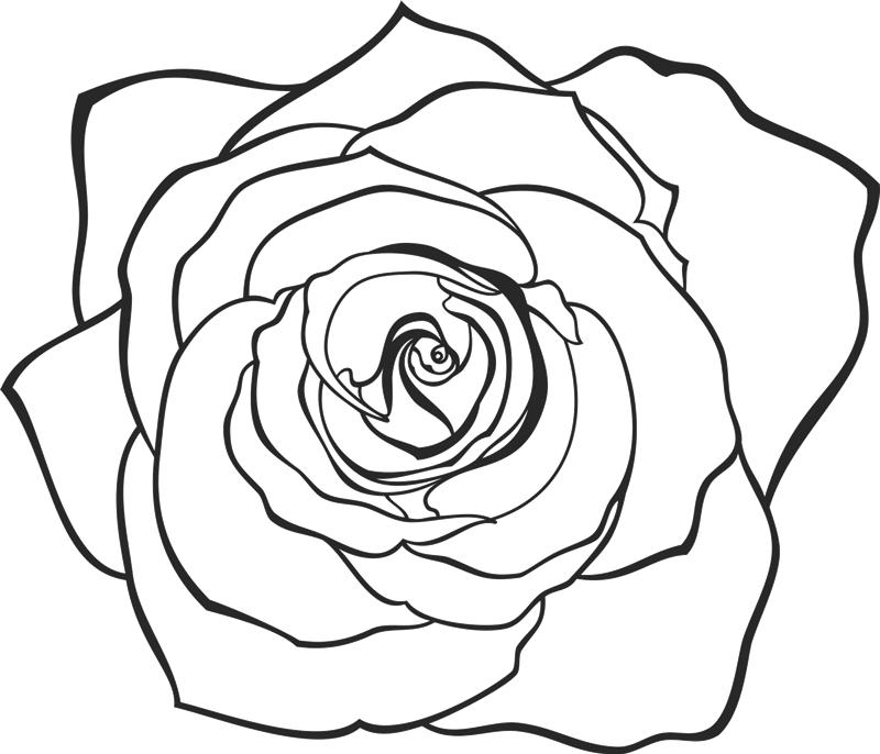 hand drawn rose rubber stamp flower leaf stamps stamptopia