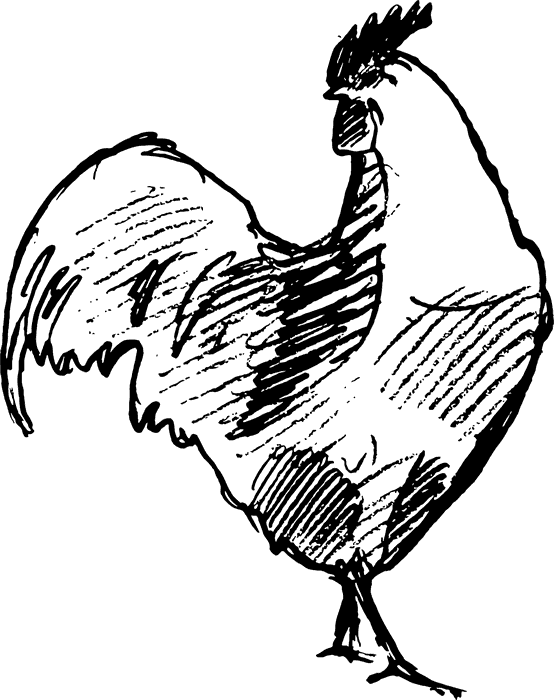 Handsome Rooster Rubber Stamp - Stamptopia