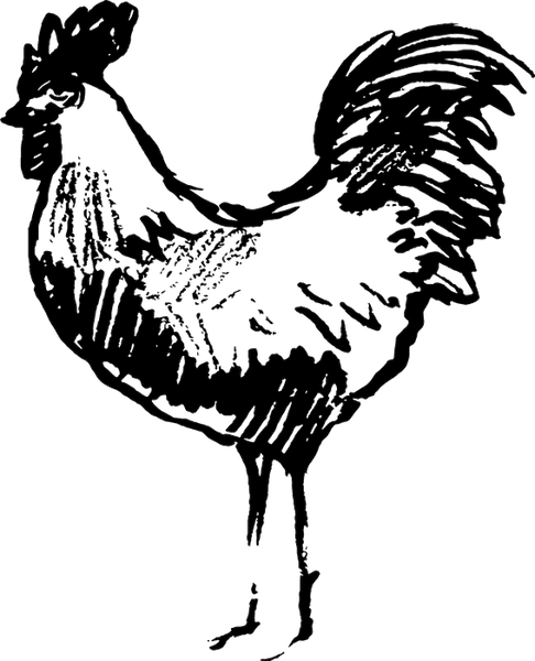 Sketched Rooster Rubber Stamp - Stamptopia
