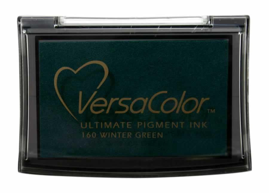 Versacolor Pigment - Winter Green - Stamptopia