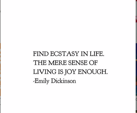 emily dickinson inspiration blog post ecstacy in life