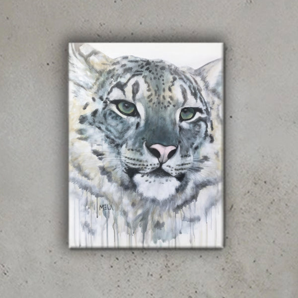 Snow Leopard Canvas