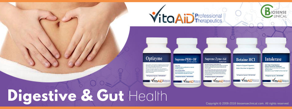 VitaAid category banner Digestive & Gut health