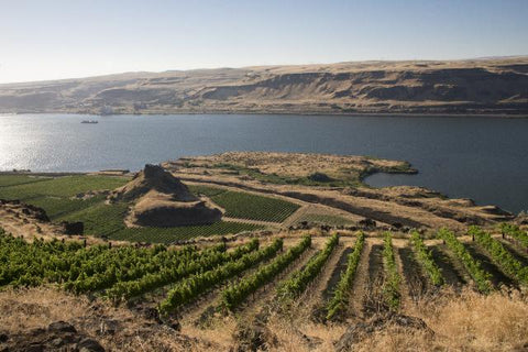 washington state wines RV park