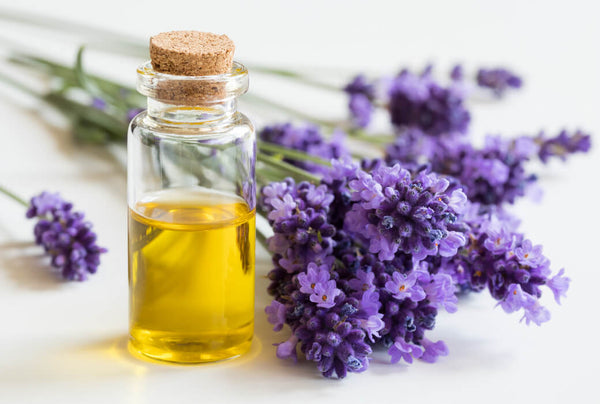 lavender essential oil benefits for skin