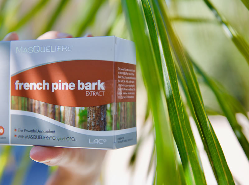 French Pine Bark