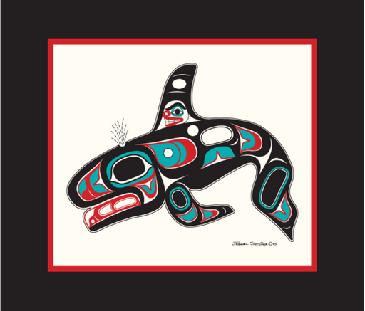 """Killer Whale"" Open Edition Art Print - The Shotridge Collection"