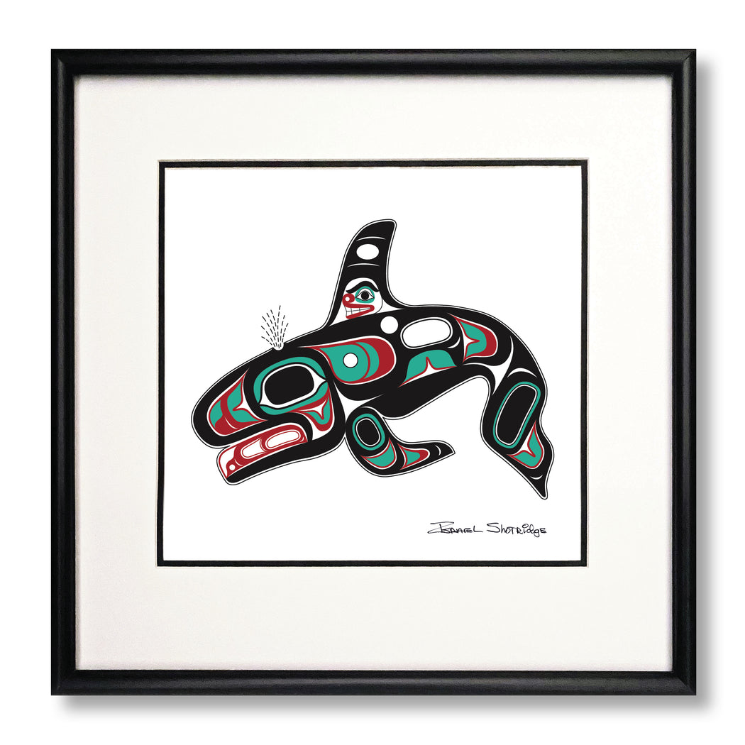 """Killer Whale"" Limited Edition Art Print"