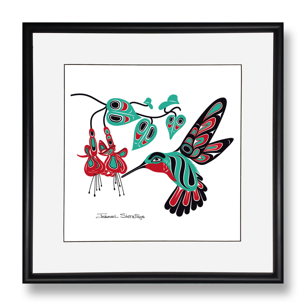 """Hummingbird & Fuchsia"" Limited Edition Art Print - The Shotridge Collection"