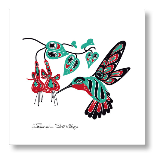 """Hummingbird & Fuchsia"" Limited Edition Art Print - Shotridge.com"