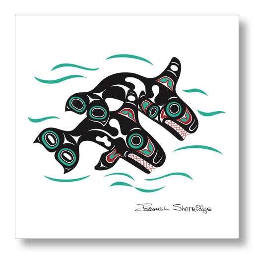 """Orcas"" Limited Edition Art Print - The Shotridge Collection"