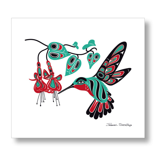 """Hummingbird & Fuchsia"" XL Limited Edition Art Print - The Shotridge Collection"