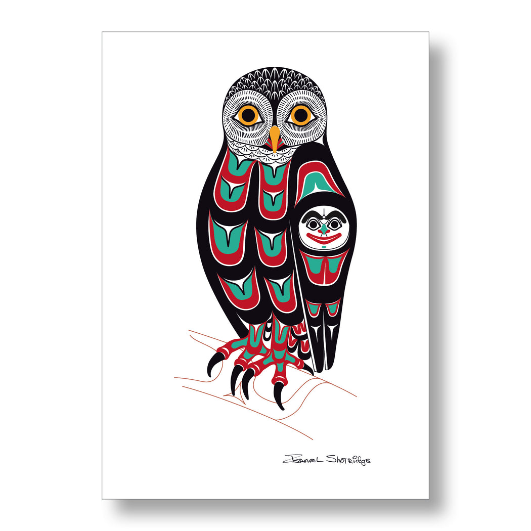 """Owl"" XL Limited Edition Art Print - The Shotridge Collection"
