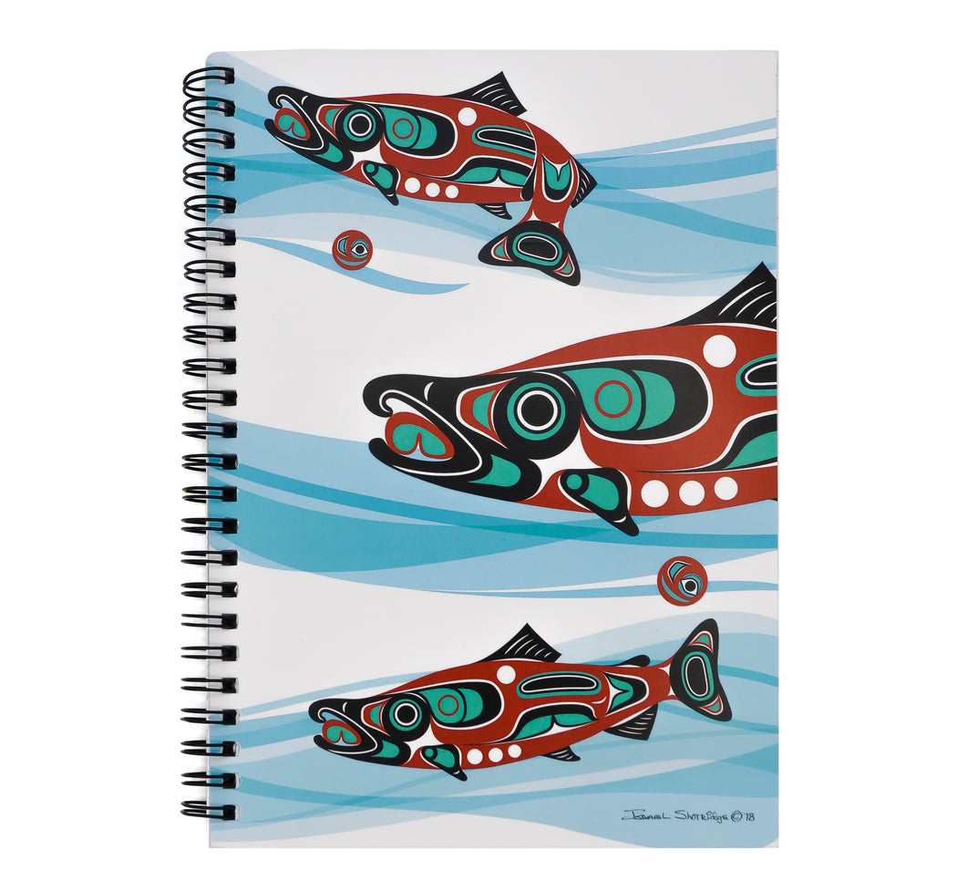 Salmon Run Formline Notebook