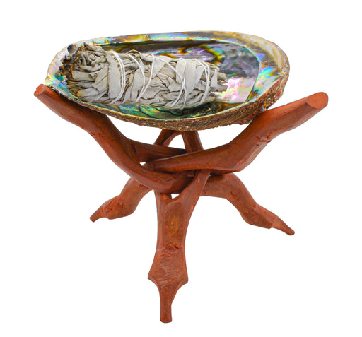 Abalone Shell & Folding Carved Wooden Stand Combo