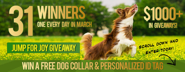 Official March Giveaway Page - Win a FREE Dog Collar & Pe...
