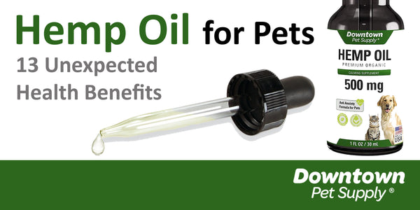Hemp Oil for Pets: 13 Unexpected Health Benefits